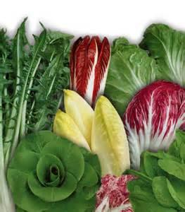 insalate varie