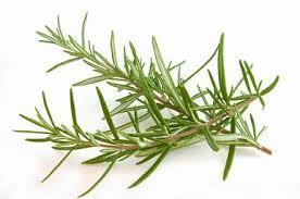 Curarsi con le erbe: il rosmarino...